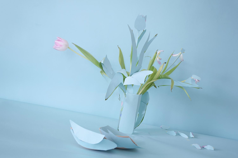 Trisha Holt Tulip