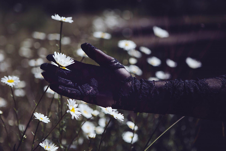 "Jennifer Lothrigel, ""Wild Daisy"", 2021"