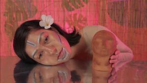 Rachelle Mozman, Opaque Mirror, 2017 (still)